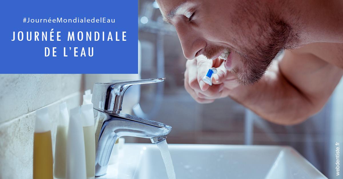 https://www.cabinetdentairedentopole.fr/Journée de l'eau 2